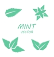 flat mint icons set vector image