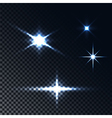 light effect stars vector image
