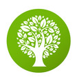 eco tree symbol vector image