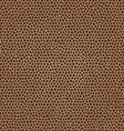 skin textures of giraffe vector image
