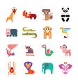 zoo animal icos vector image vector image