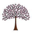 japanese tree plant icon vector image