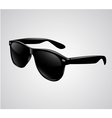 Sunglasses isolated vector image