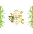 Orange juice with vitamin C banner vector image