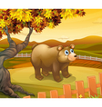 A big bear inside the fence vector image vector image