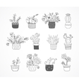 Cute hand drawn cactus set vector image