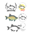 bream fishing logo vector image
