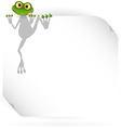 Frog and white background vector image