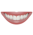 perfect smile vector image