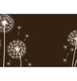 Happy holiday card with dandelions vector image