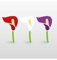 calla icons vector image