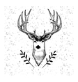 Cute hand drawn deer with bird on grange pattern vector image