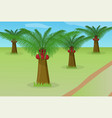 african oil palm field vector image