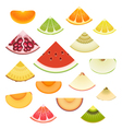 Fruit Wedge Set vector image