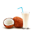 Coconut with a coconut milk cocktail vector image