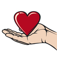 Hand holding the heart vector image vector image