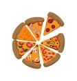 pizza slices different ingredients vector image