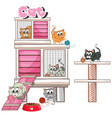 cats playing in cage vector image vector image