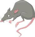 Rat cartoon vector image
