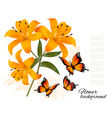 Flower Background With Three Beautiful Lilies and vector image