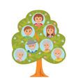 cartoon generation family tree in flat style vector image