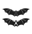 fruit bat vector image
