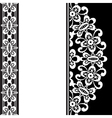 White lace on black vector image vector image