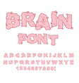 Brain font Letters from Central department human vector image