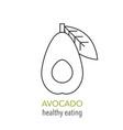 avocado line icon healthy eating vector image