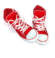 Red sneakers on white background vector image