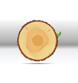 Tree growth rings wood vector image