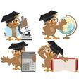 Set owls teachers vector image