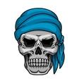 Pirate skull in blue bandana vector image