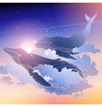 Graphic whales flying in the sky vector image