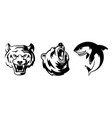 animals for sport badges grizzly vector image