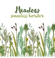 seamless herbal border vector image