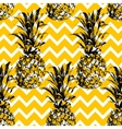 Hand drawn pineapple seamless pattern vector image vector image