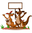 family kangaroo with blank board vector image vector image