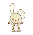 rabbit or bunny icon image vector image