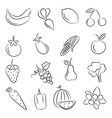 a set of sketches of food vector image vector image