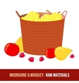 Moonshine and whiskey Harvest raw materials vector image
