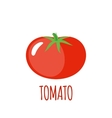 Tomato icon in flat style on white background vector image