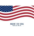 USA flag marketing and production design vector image
