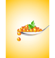 Spoon with red caviar vector image vector image