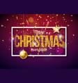 merry christmas on shiny vector image
