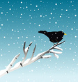 Winter with blackbird on branch vector image