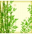 Bamboo vintage for your business vector image