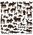 animals - doodles vector image vector image
