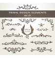 Set of design elements in tribal style Collection vector image