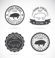 Set of pig label vector image